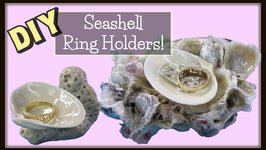 DIY Seashell Ring Holders  Craft Klatch Crafting with Nature Series