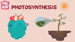 Photosynthesis - The Dr. Binocs Show