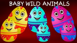 Surprise Eggs Wildlife Toys  Learn Baby Wild Animals And Animal Sounds  Chuchu TV Surprise For Kids