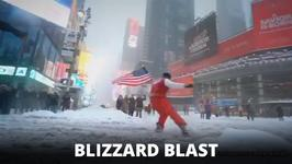 Blizzard brings the bizarre, cute and funny in the USA
