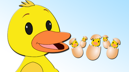 Paachti Haasher Cchana  Five Little Ducks Nursery Rhymes in Bengali