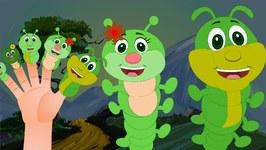 Worm Finger Family Nursery Rhyme  Animal Finger Family  Bug Finger Family
