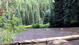 Nature - The West Fork Of The Dolores River