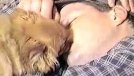 Puppy Kissing People- PetTube