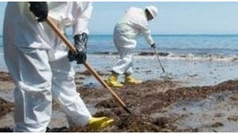 Santa Barbara Oil Spill Gets Company Felony Charges with Possible Jail