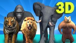 Animal Finger Family Songs -Finger Family song - 3d Wild Animals Cartoons Finger Family Rhymes