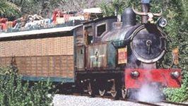 The Wildlife Express Train at Walt Disney World's Animal Kingdom  -in HD