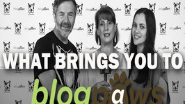 Pet World Insider Presents - What Brings You To BlogPaws