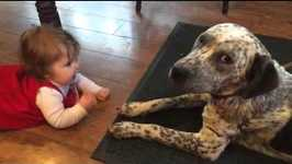 A dog and baby girl crawl to each other for kisses