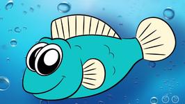 How Do Fish Breathe?