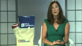 Tis The Season For Fall Travel - Meaghan Collier And Lisa Niver NBC Studio 4