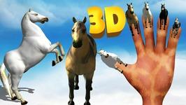 Horse Finger Family - Animals Cartoons Finger Family Children Nursery Rhymes