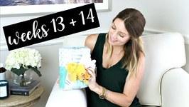 Twin Pregnancy Vlog Weeks 13 and 14