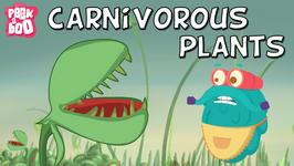 Carnivorous Plants - The Dr. Binocs Show - Educational Videos For Kids