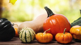Best Seasonal Produce for Fall