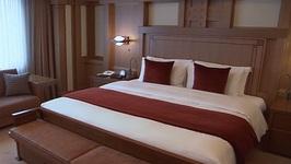 Japan: Tokyo, Imperial Hotel