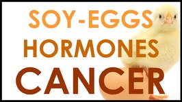 Eggs, Soy, and Cancer