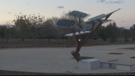 Solar-Panelled Smart Tree Offers Shade to Hot Israelis
