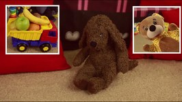 Children's Videos  Learn About Healthy Eating For Kids  Fruit   Bear, Dog And Toy Truck