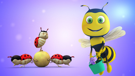 Insects  Learning Songs and Original Songs for Kids