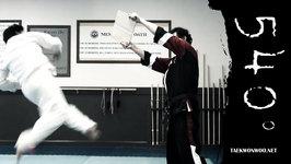 Taekwondo 540 Hook Kick (Taekwonwoo)