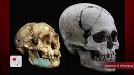 New Evidence Of Hobbit Sized Humans Found