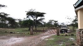 Entering the Serengeti's North Gate - Tanzania Safari - Vlog 12