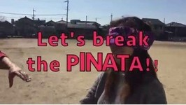 Pinata Practice For Spring School