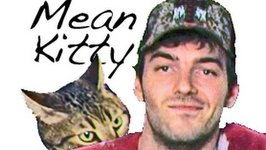 Mean Kitty - How To Annoy Your Owner