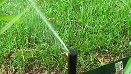 Do Your Part Water Wisely In Your Lawn and Garden