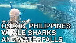 Whale Sharks And Waterfalls In Oslob - Philippines
