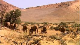 Namibia: Damaraland Camp