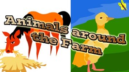 Animals Around The Farm Animal Sounds For Kids Video By