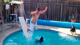 People Failing At Diving Off Diving Boards