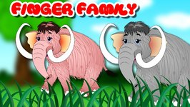 Finger Family Mammoth Family Rhymes - Animals Cartoon Finger Family Rhymes for Children