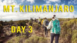 Kilimanjaro - Lemosho Route - Day 3
