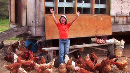 This is Emily Yeung Learning About Chickens