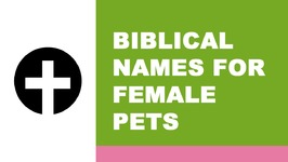 Biblical names for female pets - the best names for your pet