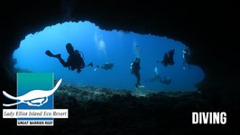 Scuba Diving, Lady Elliot Island, Southern Great Barrier Reef, Queensland, Australia