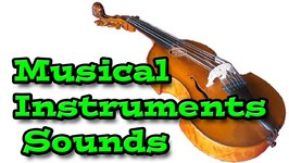 Musical Instruments Sounds  Kids Learning Video