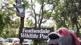 Uncle Interloper: Down Under  Featherdale Wildlife Park