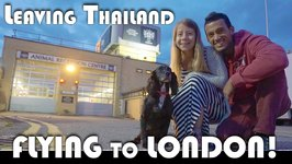 Leaving Thailand, Flying To London With My Dog - Moving To Portugal Daily Vlog (ADITL EP 327)