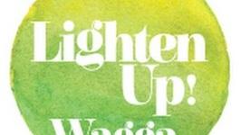 Lighten Up Wagga Snapshot