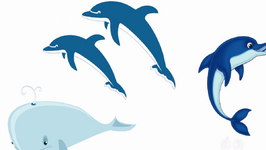 Is The Whale The Only Sea Mammal?