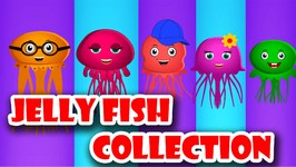 Jellyfish Finger Family Collection  Finger Family Songs  Animal Finger Family Collection