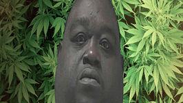 Fat Boy Hides Marijuana in Belly Fat  Gets Caught