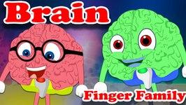 Finger Family  Brain Finger Family  Finger Family Songs  Finger Family Nursery Rhyme