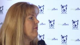 Moment With An Insider - Denise Fleck - Pet Safety Crusader - BlogPaws Edition