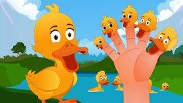 Five Little Ducks Finger Family  Finger Family Songs  Five Little Ducks Went Out One Day
