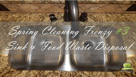 Spring Cleaning Frenzy 3  Kitchen Sink and Food Waste Disposal